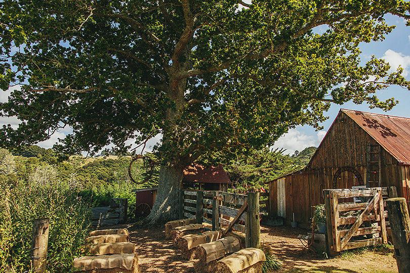 boutique-barn