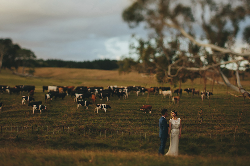 puhoi auckland wedding photographer